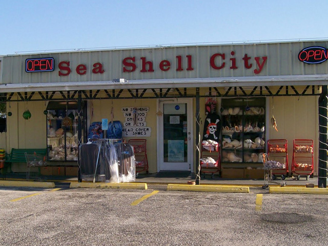 sea-shell-city